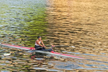 Rower In Color