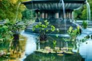 Jerry Kaufman, Bethesda Fountain, Photography Northeast, central Park, New York City, Park fountain